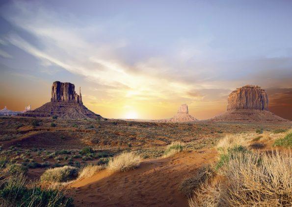 Typical landscape of Arizona desert.